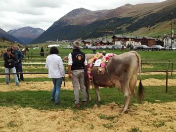 Alpenfest Livigno